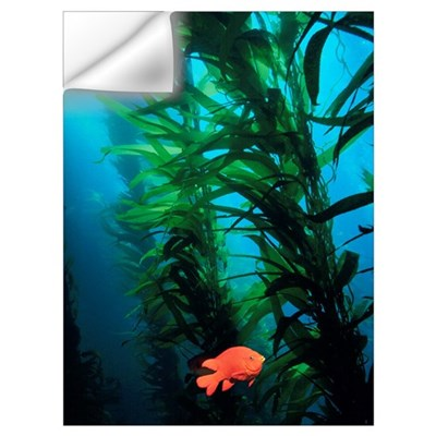 Kelp Scene Wall Decal