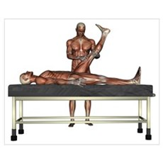 Massage Muscles Poster