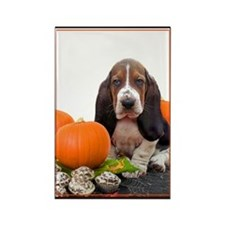 Halloween Basset Hound Rectangle Magnet