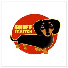 SNIFF IT, BITCH! Doxie Poster