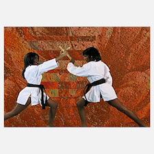 Kung fu pinup Wall Art