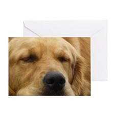 Golden Retriever sleeping Greeting Card