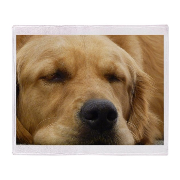 Golden Retriever Sleeping Throw Blanket By Whiterose2