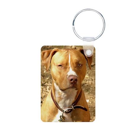 Pitbull Aluminum Photo Keychain
