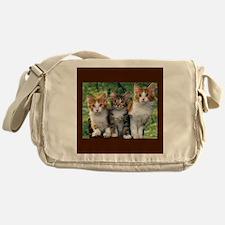 3 Cats Messenger Bag