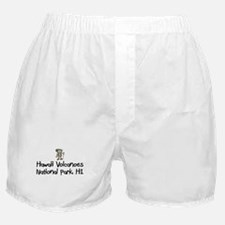 Hike Hawaii Volcanoes (Boy) Boxer Shorts