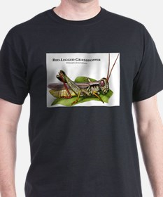 Red-Legged Grasshopper T-Shirt