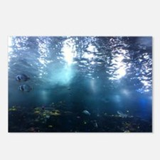 water world 2 Postcards (Package of 8)