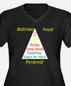 Bolivian Food Pyramid Women's Plus Size V-Neck Dar