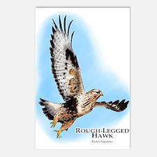 Rough-Legged Hawk Postcards (Package of 8)