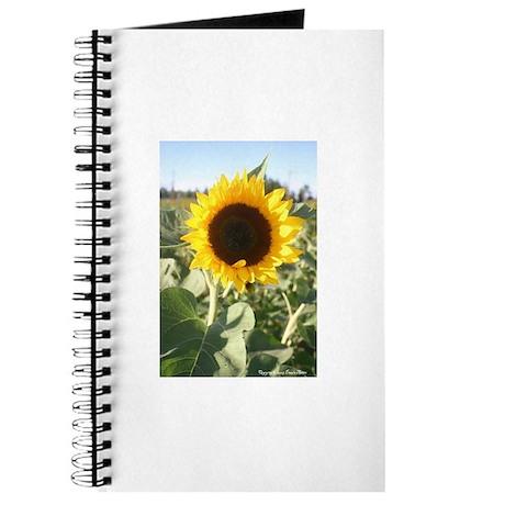 Sunflower Photo Journal