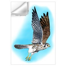 American Kestrel Wall Decal