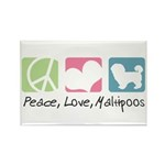 Peace, Love, Maltipoos Rectangle Magnet (10 pack)