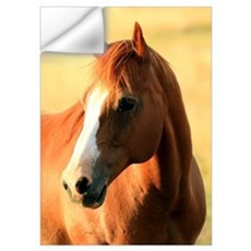 Horse ,1, Wall Decal