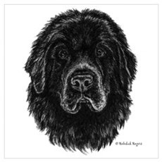 Newfie Poster