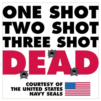 One Shot Two Shot Poster