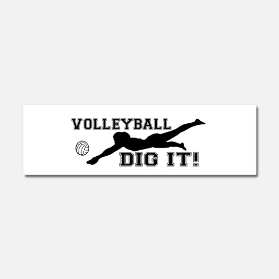 Volleyball Car Magnets Cafepress