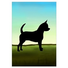 Grassy Field Chihuahua Poster