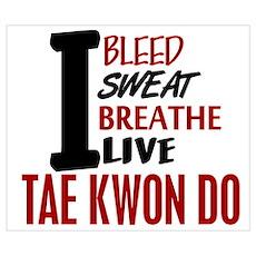 Bleed Sweat Breathe Tae Kwon Do Poster