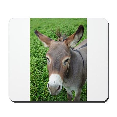 Mule Mousepad