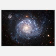 NGC 1309 Spiral Galaxy