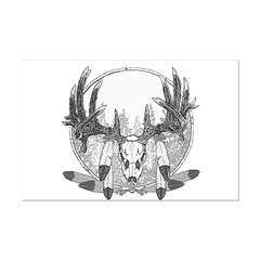 Whitetail Euro Mount Posters