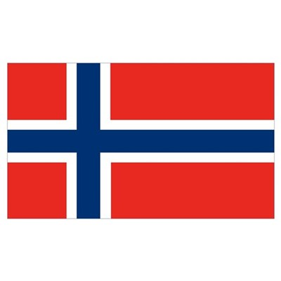 Norway Flag Framed Print