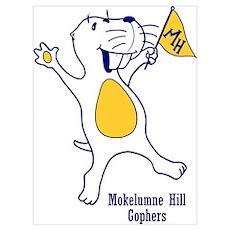 Moke Hill Poster