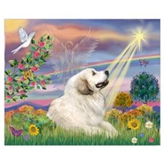Cloud Star & Great Pyrenees Poster