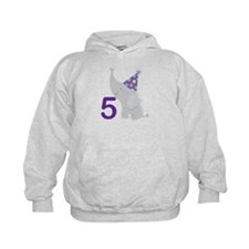5th Birthday Zoo Animals Hoodie
