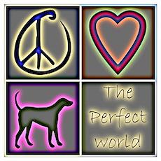 Perfect World: Labrador Retri Poster