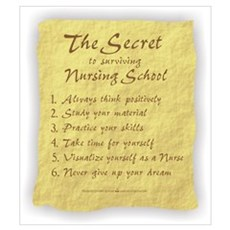 The Secret to Nursing School Framed Print