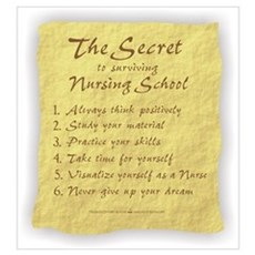 The Secret to Nursing School Poster