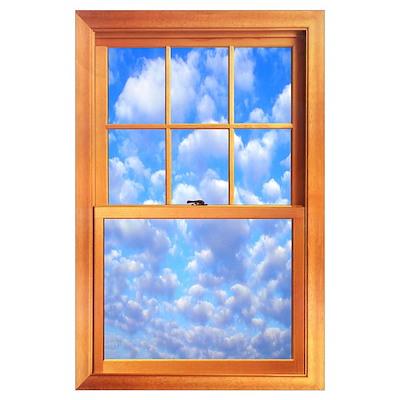 large trompe l oeil window 23 x 35 quot poster