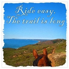 Ride easy trail horse Canvas Art