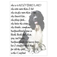 Newfoundland Dog answers Framed Print