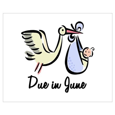 Due In June Stork Canvas Art