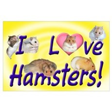 I Love Hamsters #01 Poster