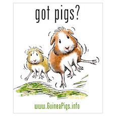Got Pigs Poster