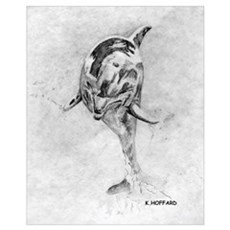 Dolphin Canvas Art