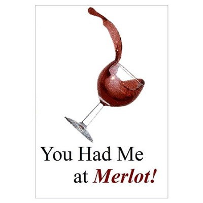 You Had Me at Merlot! Canvas Art