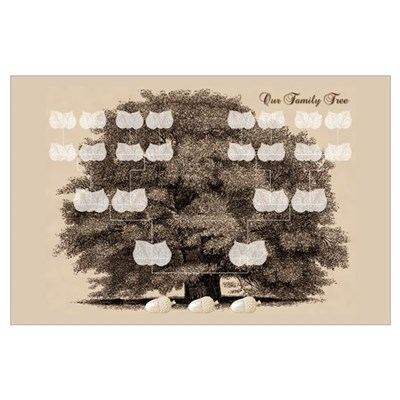 Family Tree 3 Acorns Poster