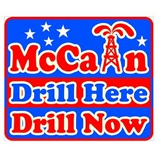 McCain Express 3 Poster