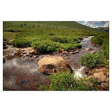 Colorado Landscapes Poster