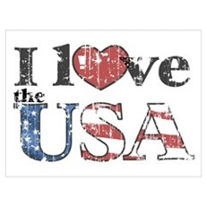 I Love the USA Poster