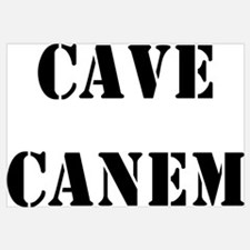 "Cave Canem ""Beware of Dog"""