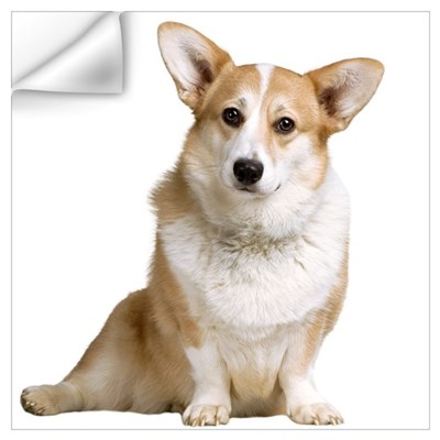 Welsh Corgi Picture Wall Decal