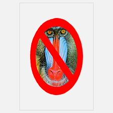 No Baboons