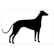 Greyhound Dog Canvas Art