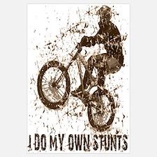 Mountain Bike, BMX - Stunts